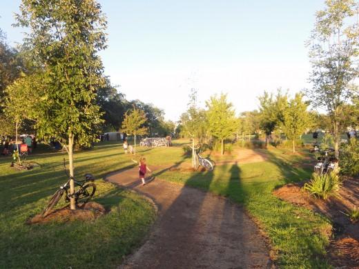 City Park greenery