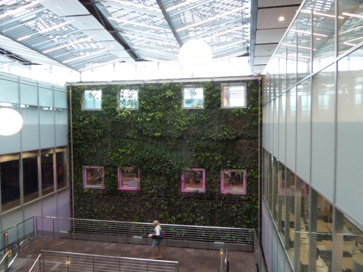 Living wall at the Mauritius airport.