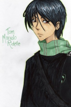 Tom Marvolo Riddle or the Dark Lord Voldemort was the one who killed James and Lily Potter. He wanted to kill baby Harry, but was unable to do so