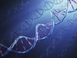 Playing God, Part 1: Genetics