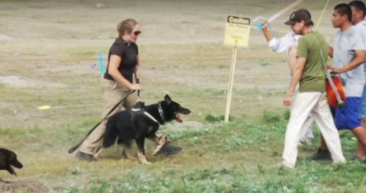 Police enforce with attacking dogs
