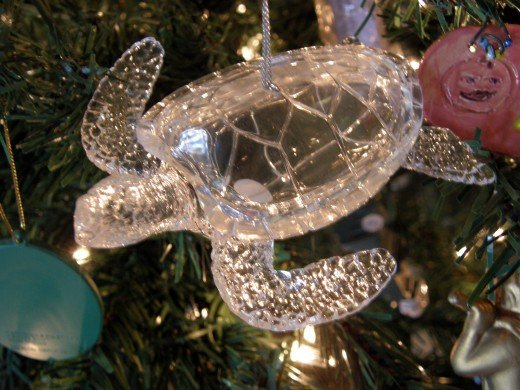 One of my students gave me this ornament as a memory of the Turtle Farm in my native country, Cayman Islands.