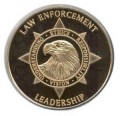 Meta-Analysis of Leadership in Policing and Crisis Management