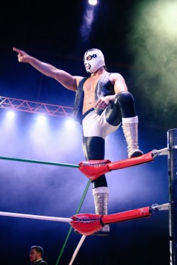 CMLL Tuesday: Where They Play the Wrong Theme Songs and So Do I!