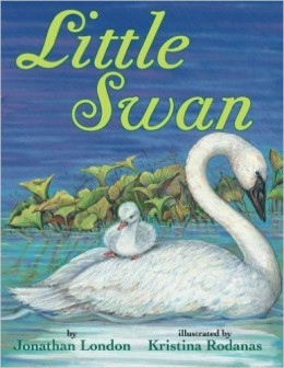 Little Swan by Jonathan London