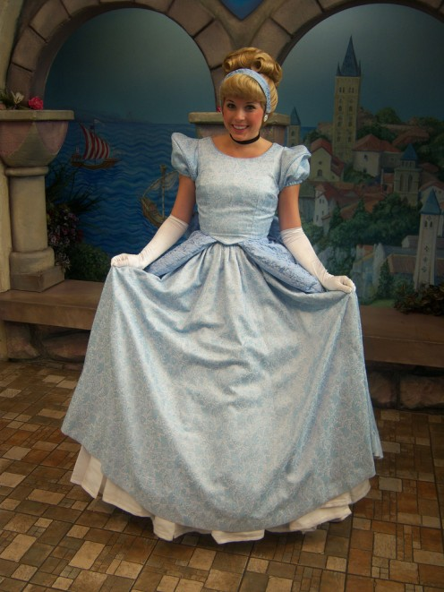Want to be a Disney Princess for Halloween? You can choose to dress up as Cinderella, if you want, but there are many other princesses to choose from like Snow White, Aurora from Sleeping Beauty, Elsa and Anna from Frozen, Rapunzel from Tangled, etc