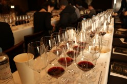 Wine Tasting Terms That Every Wine Lover Should Know