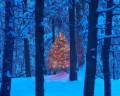 Less Stress For The Holidays; Seeking Spirituality