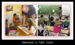 Homeschool VS. Public School
