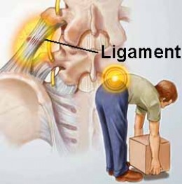 The Most Common Back Injuries in the Fitness Field