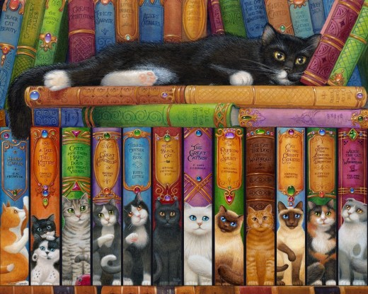 The Cat BookShelf Puzzle