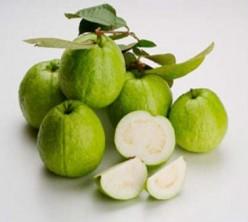 Guava: Top Ten Health Benefits of Eating Guava
