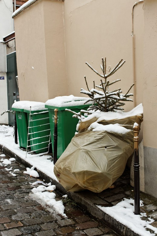 Disposing of your tree in an environmentally friendly manner can be as easy as setting it on the curb.