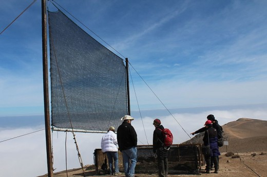An atrapanieblas (fog net) in Alto Patache, Chile provides essential drinking water for local residents.