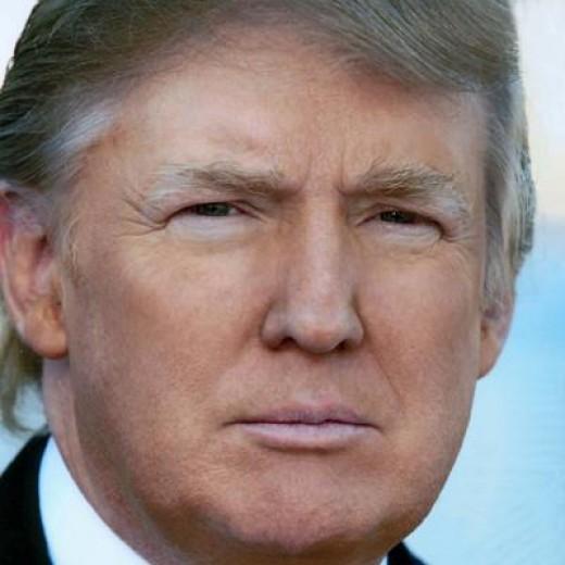 Incoming President Donald J Trump