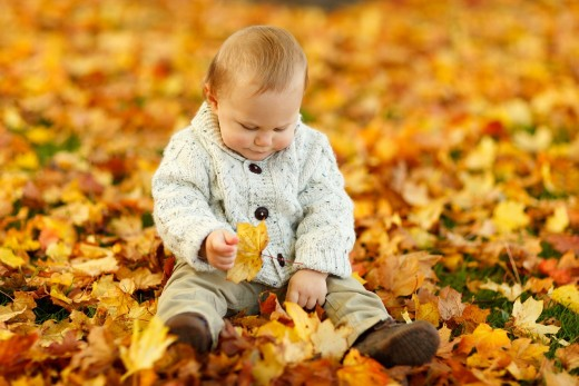 A child enjoys playing with brightly colored fall leaves.