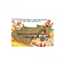Donald McGill Saucy Seaside Postcards and the Obscene Publications Act