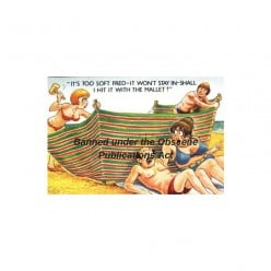 Saucy Seaside Postcards: Donald McGill and the Obscene Publications Act