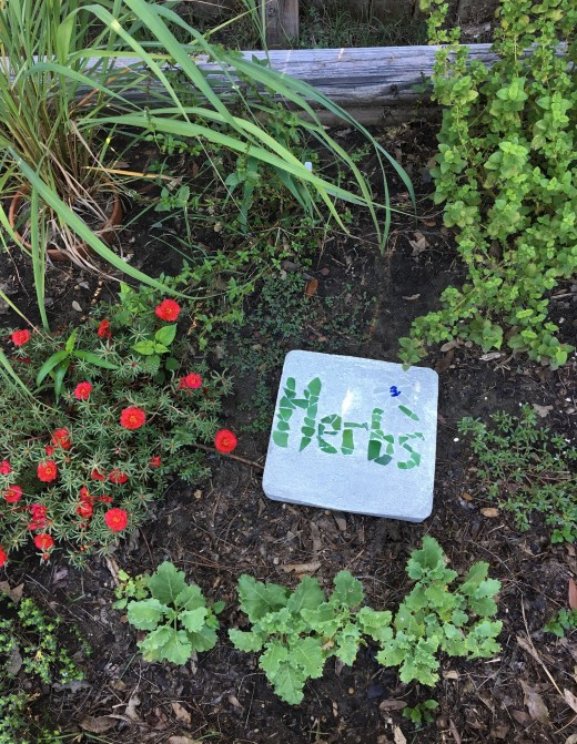 I used sea glass to make this stepping stone in my herb garden.