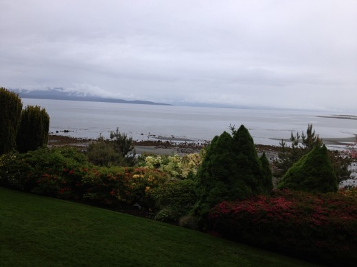 Beautiful foggy morning in Parksville.