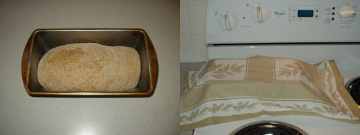Step 5: Shape dough into loaf, place in pan, cover and set in a warm place.