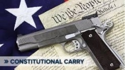 Do you support Constitutional Carry in Texas?