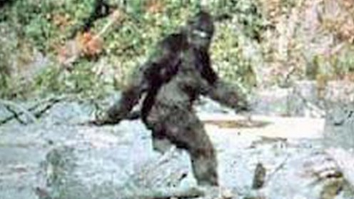 Roger Patterson footage taken in 1967
