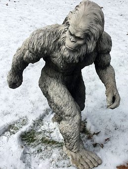 Apparently Big foot is  immune to snow and ice