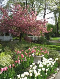 Queens Botanical Garden / Photo by E. A. Wright 2009