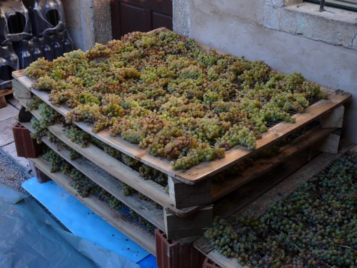 Grapes storage in the basement.
