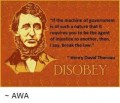 Henry David Thoreau Would Have Been a Bad Ant