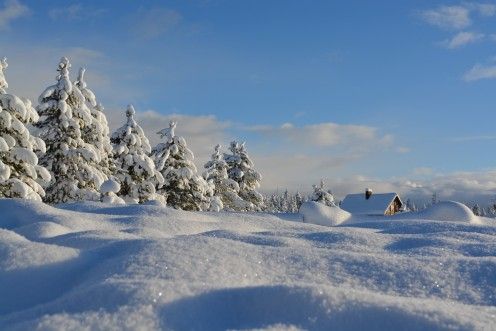 Scenes such as this one are present in regions of the world where it snows a lot.