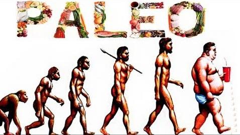 Paleo evolution.