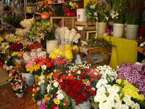 Cut flowers for sale in a traditional street market.