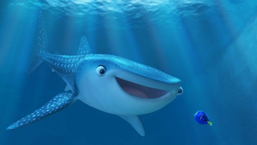Destiny, the whale shark.