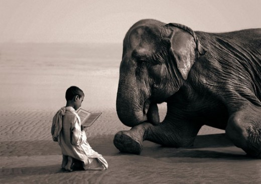 Gregory Colbert - Ashes and Snow