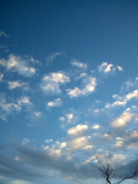 Sky above the patio
