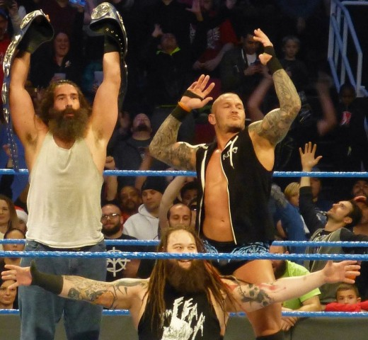 The Wyatt Family holding the Smackdown Tag Team Championships