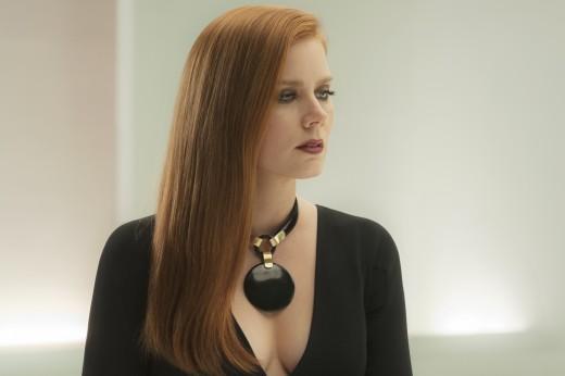 Susan Morrow (Amy Adams) #2