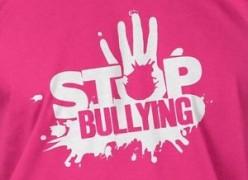 Make Love, Not War On Pink Shirt Day