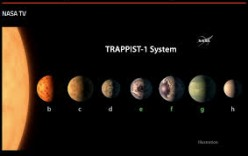 Do you think there is life on any of the planets in Trappist-1?