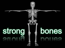 How to build strong bones? Bones Play a Major Role Behind Your Health by Providing an Excellent Support to the Body