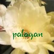 palagan profile image