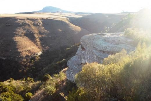 View on Drakensberge, Van Reenen Tea Garden, KZN, South Africa (winter)