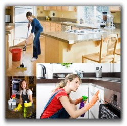 Fortnightly Cleaning Guidelines Meant to Help Home-Owners