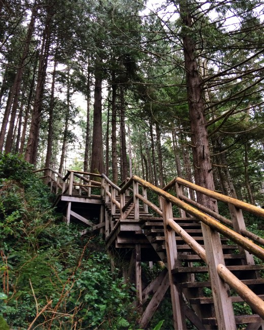 There's nothing like a staircase leading from the temperate rainforest to the Pacific Ocean.