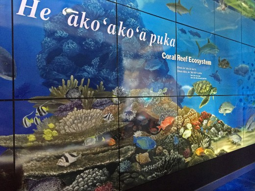 Coral reef mural at Mokupapapa Discovery Center.