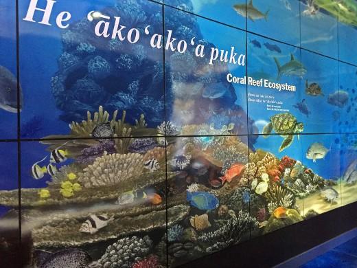 Coral reef mural at Mokupapapa Discovery Center.