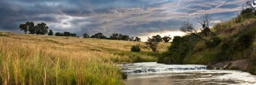 ZuluWaters Game Reservenear Mooi River, KZN, South Africa