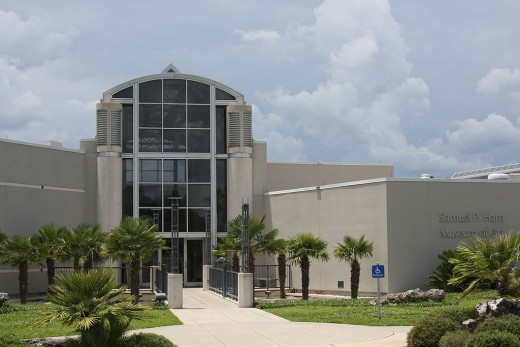 The Samuel P. Harn Museum of Art can be found in the southwest section of the University of Florida campus in the Cultural Plaza area.